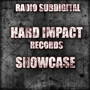 The Chronic @ Radio Subdigital [Hard Impact Records Showcase] Jan. 17, 2014